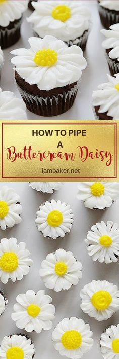 Buttercream daisy overload! A sweet, simple daisy that anyone can do.