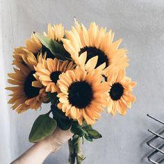 3,505 отметок «Нравится», 111 комментариев — Birgitte (@birgittetheresa) в Instagram: «Happy Monday - sunflowers . . . . . . . . . . #floral_perfection #floralstyle #botanicalpickmeup…»