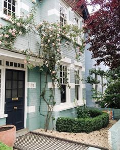 Pretty blue painted brick + climbing roses