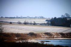 Vestfynsk kystlandskab på en kold februardag #visitfyn #fyn #nature #visitdenmark #naturelovers #natur #denmark #danmark #dänemark #landscape #assens #mitassens #vildmedfyn #fynerfin #assensnatur #opdagdanmark #visitassens #instapic #danishnature #sea #danishbeach #travelpics #february #winter #snow #winterindenmark