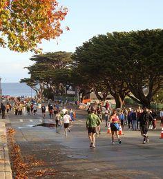 Big Sur Half Marathon on the Monterey Peninsula