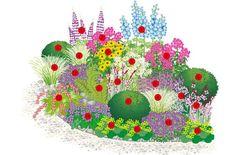 A perennial flowering perennial border: 1 larkspur (Delphinium hybr.), 4 sunflowers … - All For Garden