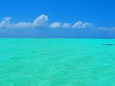 Bora Bora sand bar
