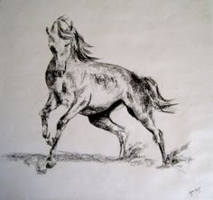 17x18 Charcoal Horse by AlyssaTales on Etsy, $75.00