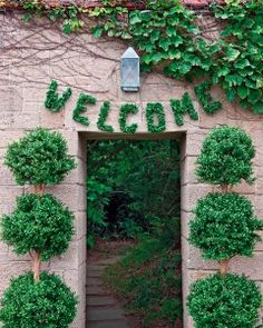 Outdoor Wedding Decorations That Are Easy to DIY