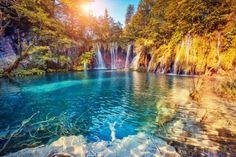 息をのむ美しさ!クロアチアで必ず訪れたい植物と動物のオアシスです。