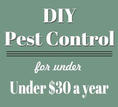 DIY Pest Control for Under $30 a Year!  So smart!  From www.overthebigmoon.com!