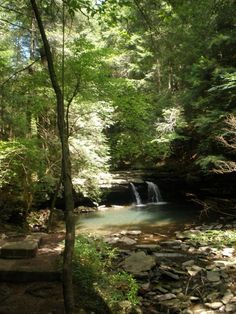 The Smoky Mountains in Tennessee have some of the best hiking and biking trails - and beautiful natural sights like these wooded waterfalls. Check out a vacation rental in Pigeon Forge or Gatlinburg to be right in the middle of all the action!