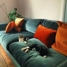 There's nothing better than getting down and squishy on a Saturday - like Vicky's feline friends on their Weekender sofa! There's nothing better than getting down and squishy on a Saturday - like Vicky's feline friends on their Weekender sofa! Home Living Room, Living Room Designs, Cottage Living, Living Area, Home Design, Interior Design, Dream Apartment, Apartment Living, Design Case