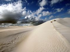australian sand dunes...these were in my area.