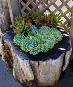 74 Cheap And Easy Simple Front Yard Landscaping Ideas (42) #LandscapingIdeas