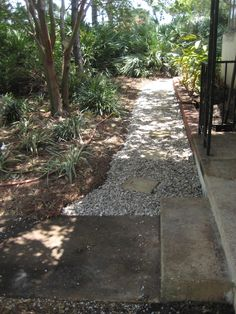 """The sandy soils of Pinellas is denser than crushed shell which always keeps the shell """"floating"""" on top of the sand. This keeps the shell looking the same for years of service Stepping Stone Paths, Kampot, Hardscape Design, Sandy Soil, Walkways, Lawn Care, Lawn And Garden, Sea Shells, Southern"""