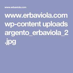 www.erbaviola.com wp-content uploads argento_erbaviola_2.jpg