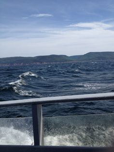 Cape Breton, Whale Watching, Nova Scotia, Touring, Coastal, Things To Do, Waves, Canada, The Incredibles