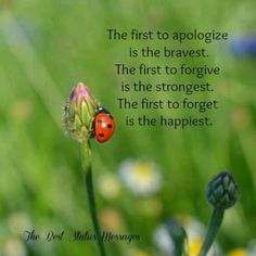 The first to apologize is the bravest. The first to forgive is the strongest. The first to forget is the happiest. Like Quotes, Strong Quotes, Words Quotes, Quotes To Live By, Best Quotes, Sayings, Life Advice, Good Advice, Ladybug Meaning