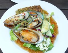New Zealand green-lipped mussel, (Perna canalicula), also known as the New Zealand mussel perfect served.