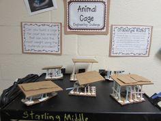 Growing a STEM Classroom