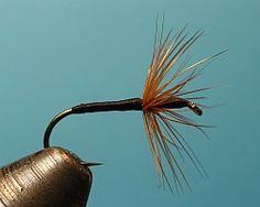 Tenkara flies are an enigma. Wide variations in Japanese regional patterns exist, yet the reknowned authority Dr. Ishigaki has used only one pattern for the past 10 years.