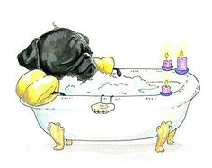 Pug in a Tub Art Print - Black Pug Art Illustration for Bathroom or Cute Bath Time Pug Painting from an Ink and Watercolor by InkPug!