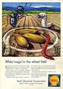Shells racist pesticide ad,1957