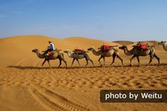 Silk Road Travel, Silk Road Online Guide: Facts, Maps, History, Tours