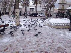 Météo Bensekrane - Algérie : Prévisions METEO GRATUITE à 15 jours - La Chaîne Météo