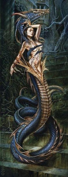 Dragon Shapeshifter ~ Anne Stokes by louisa