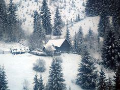 Зима, Лес, Домик, Зима