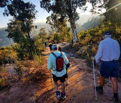 John Forrest NP Nordic walking #nordicwalking #nordic #bushwalking #trailwalker #trailswa #westernaustralia www.nordicsportsaustralia.com.au