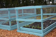 Cages....good idea for vegi garden. love having a color, put a handle on one side so you can lift the cage up.