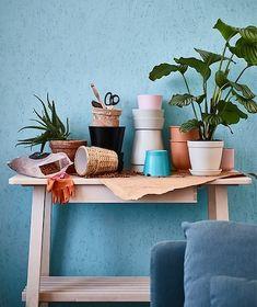 Op zoek naar sierpotten? Bij IKEA vind je sierpotten in tal van groottes, kleuren en materialen. De HJORTRON sierpot met schotel is gemaakt van beige aardewerk en heeft een afvoergat. Zie je liever potten van waterhyacint, terracotta of staal? Die hebben we ook.