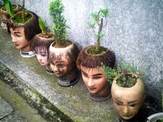 Morbid but cool flower pot. Take a mannequin head and hollow it out and grow a shallow plant in its brain