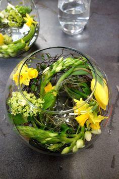Sonniges Gelb im Goldfischglas | wisper wisper