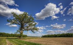 Brian Gray Photography: Great Clouds!