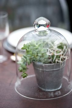 love vintage cloches