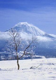 6 x Japanin lumet. Niseko, Japani.   Mondo.fi