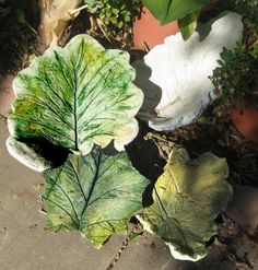more concrete leaves Painting Cement, Concrete Leaves, Garden Solutions, Concrete Projects, Garden Projects, Garden Ideas, Yard Art, Stepping Stones, Image Search