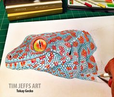 Progress 3 pic of my Tokay Gecko. Drawing with a Tombow Irojiten Colored Pencils