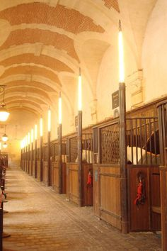 Inside the stables at Versailles