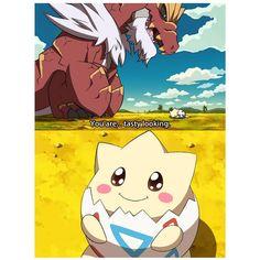 Shiny Pokemon In Anime Pokemon Mew, Pokemon Legal, Pikachu, Mega Pokemon, Pokemon Funny, Pokemon Fan Art, Pokemon Cards, Pokemon Quotes, Funny Pokemon Pictures