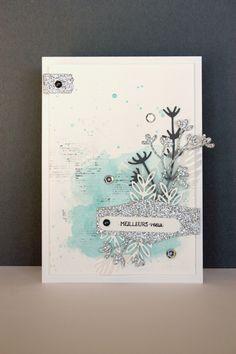 eva carte (1)