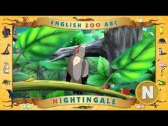 Multipedia. Zoological English alphabet