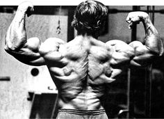 Arnold Schwarzenegger Blueprint Trainer Day 45