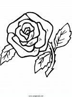 disegni_da_colorare_natura/fiore_fiori/fiori_46.JPG