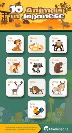 Animals #japanese #vocabulary #animals