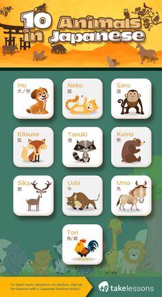 Animals #japanese #vocabulary #animals