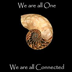 ✣ All is One ✣ Gif; Bewegenda Gadgets #Gif #Spirituality #One #Spiral #Phi #Consciousness #EllenVaman #SacredGeometry #Pinterest