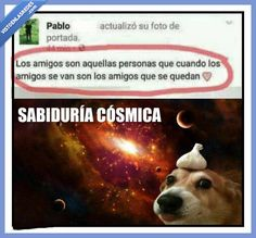 Sabiduría cósmica   Gracias a http://www.vistoenlasredes.com/   Si quieres leer la noticia completa visita: http://www.estoy-aburrido.com/sabiduria-cosmica/