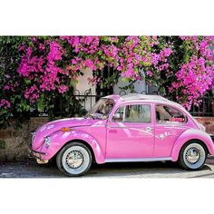 Vintage Car Models We've caught a love bug from this pretty Beetle Car, Vw Vintage, Strictly Weddings, Bmw Series, Old Classic Cars, Cute Cars, Everything Pink, Purple Aesthetic, Love Bugs