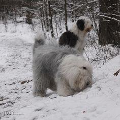 memories of winter...ft Rhea & Lisa - #RheaenLisa